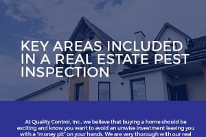 Key Areas Included in a Real Estate Pest Inspection [infographic]